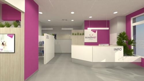 consulta veterinaria diseño